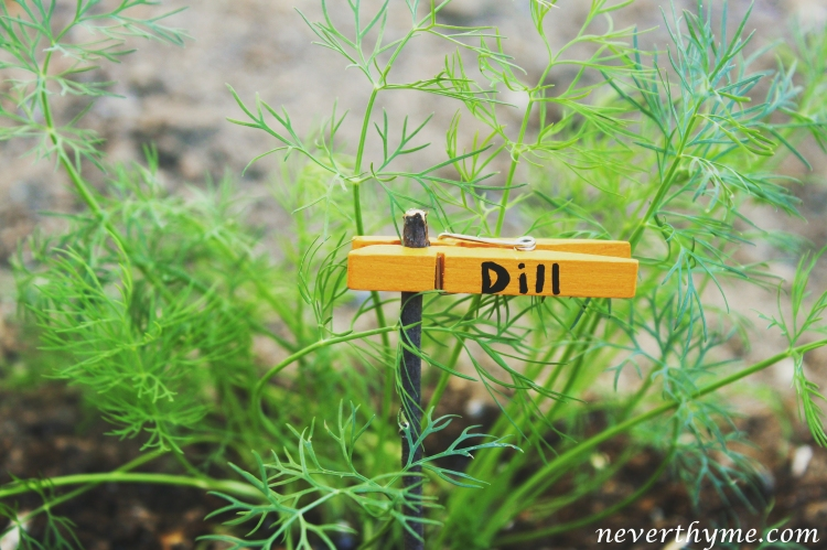 DIY Garden Label Marker
