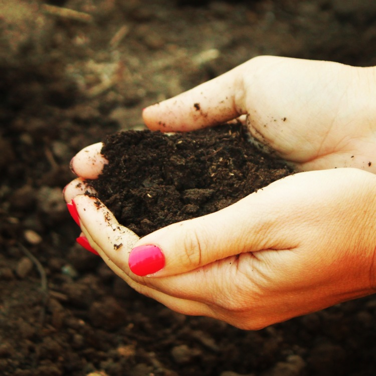 How to amend garden soil