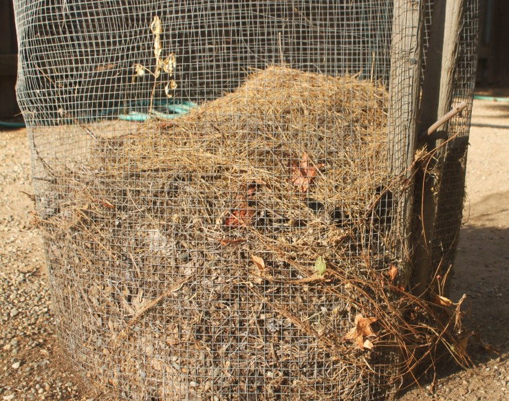 leaf litter in compost
