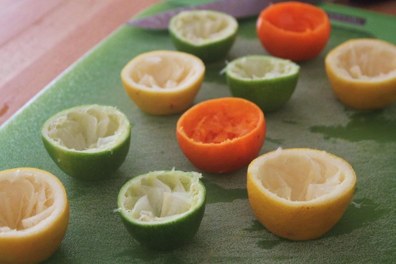 Citrus peel seed starter