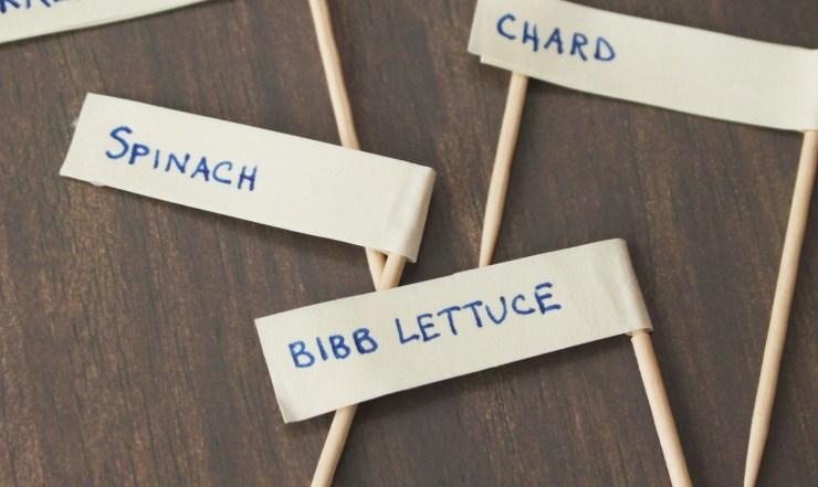 Seedling Labels