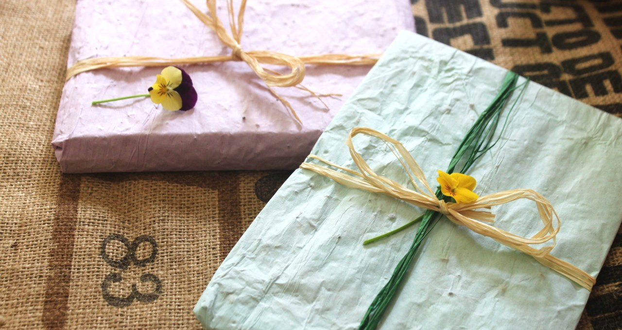 Easy DIY Seed Wrapping Paper