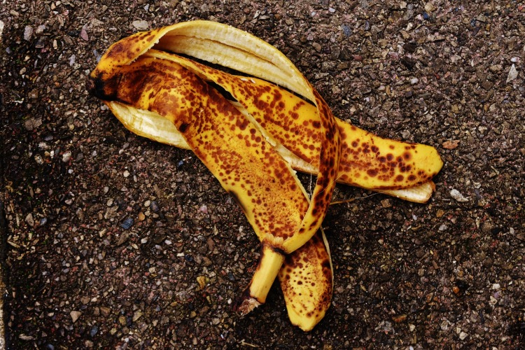Banana Peel Fertilizer