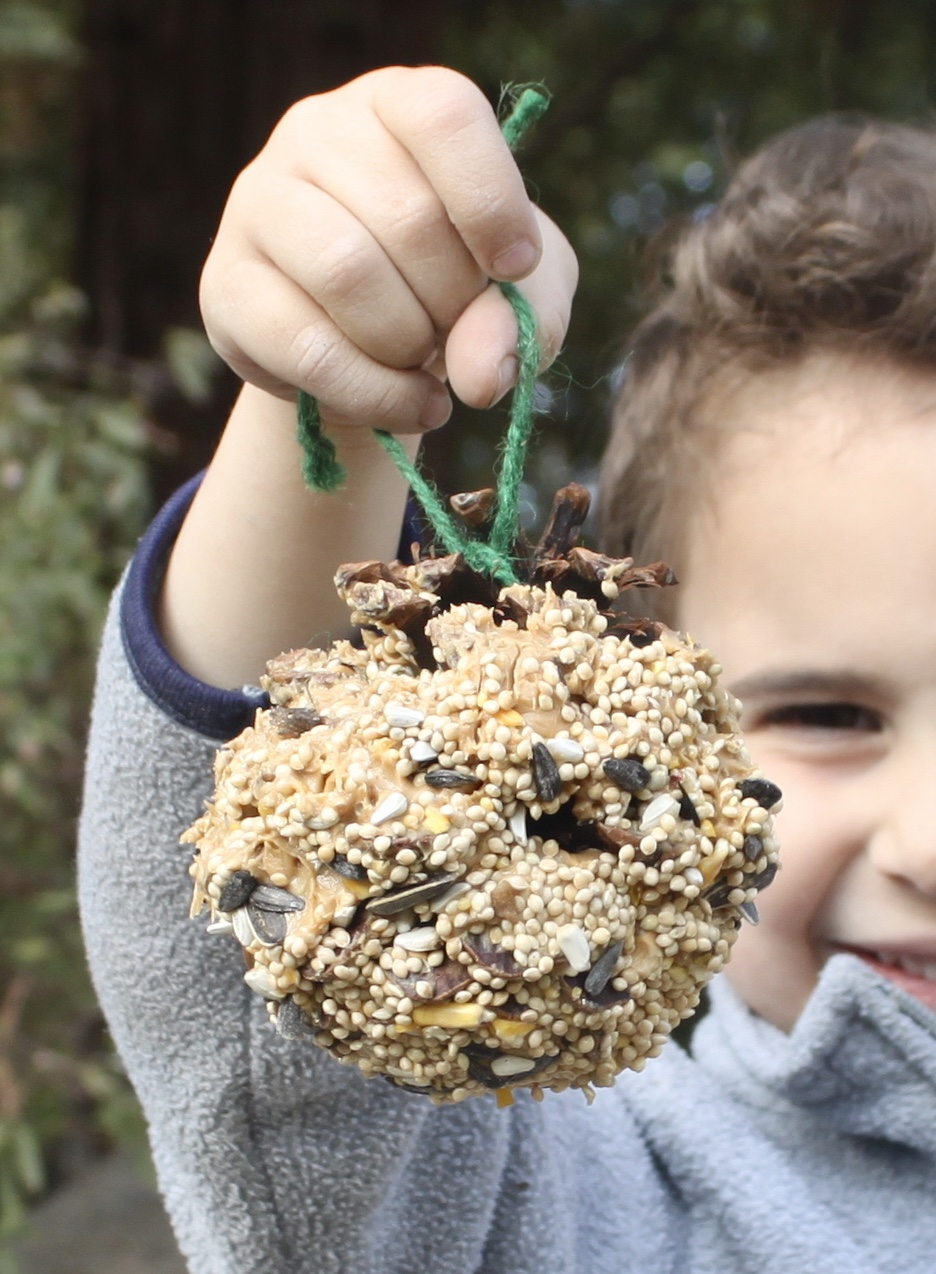 Winter garden craft for kids - Pinecone Bird Feeders